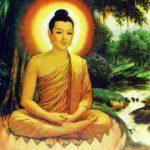 Dhammapada on Contentment