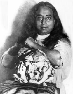 Yogananda_Tiger